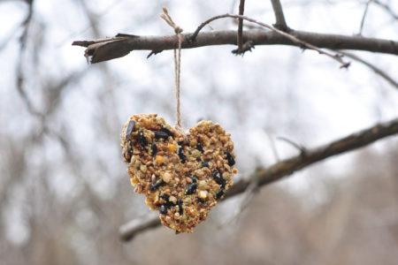 Pyssel, diy hemmagjord fågelmatare
